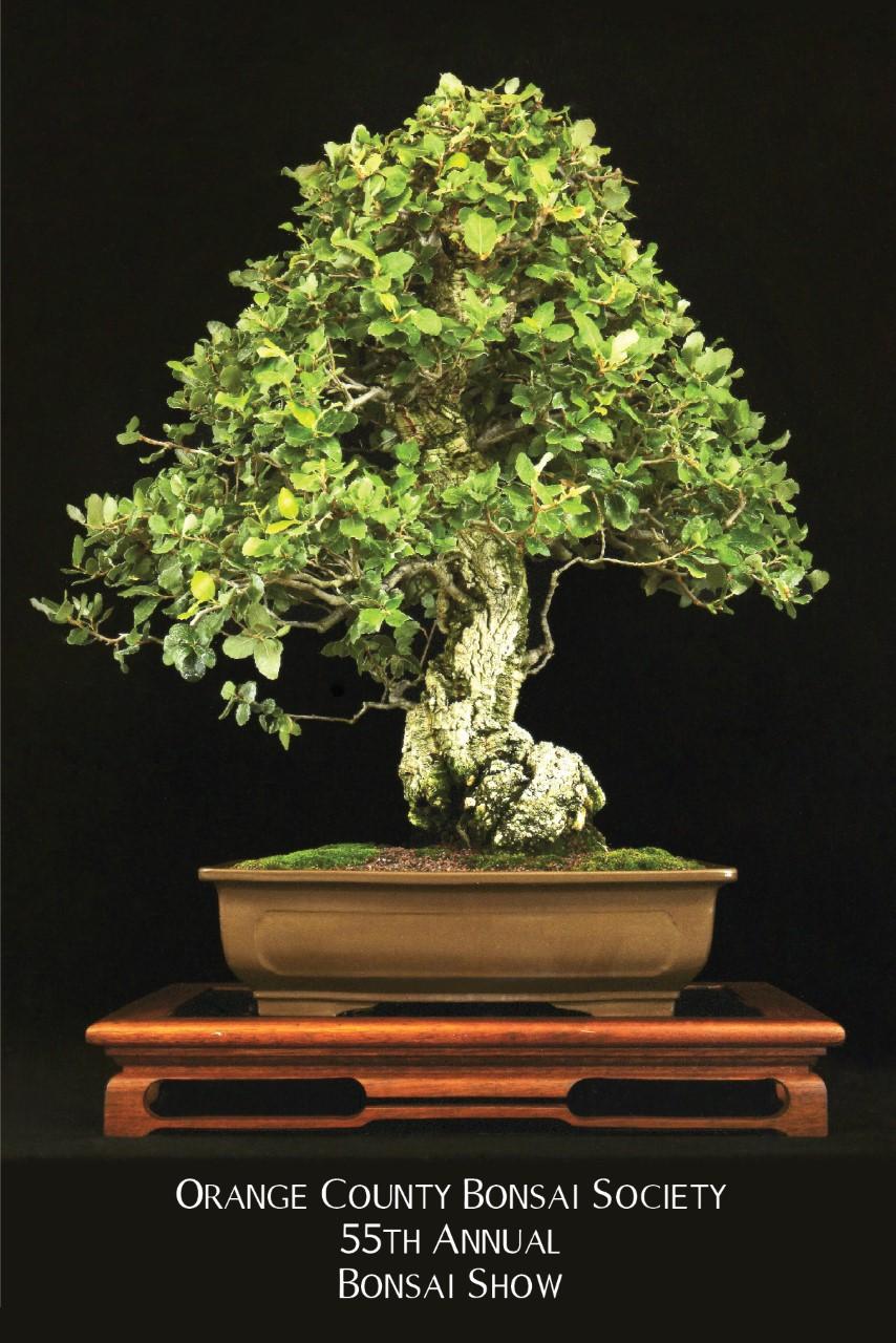 Ocbs Orange County Bonsai Society